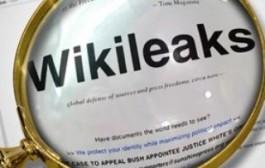 """""""WikiLeaks"""" Türkiyə ilə bağlı sənədləri açıqlayıb"""
