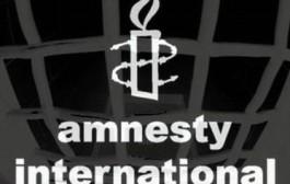 Amnesty Xədicə kampaniyasına başlayır