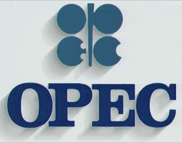 OPEC şist nefti qarşısında acizdir