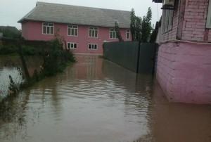 İsmayıllıda sel suları kəndləri basıb, təsərrüfata ciddi ziyan dəyib