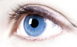 Bir qırpımının vaxt ölçüsü və başqa maraqlı göz faktları