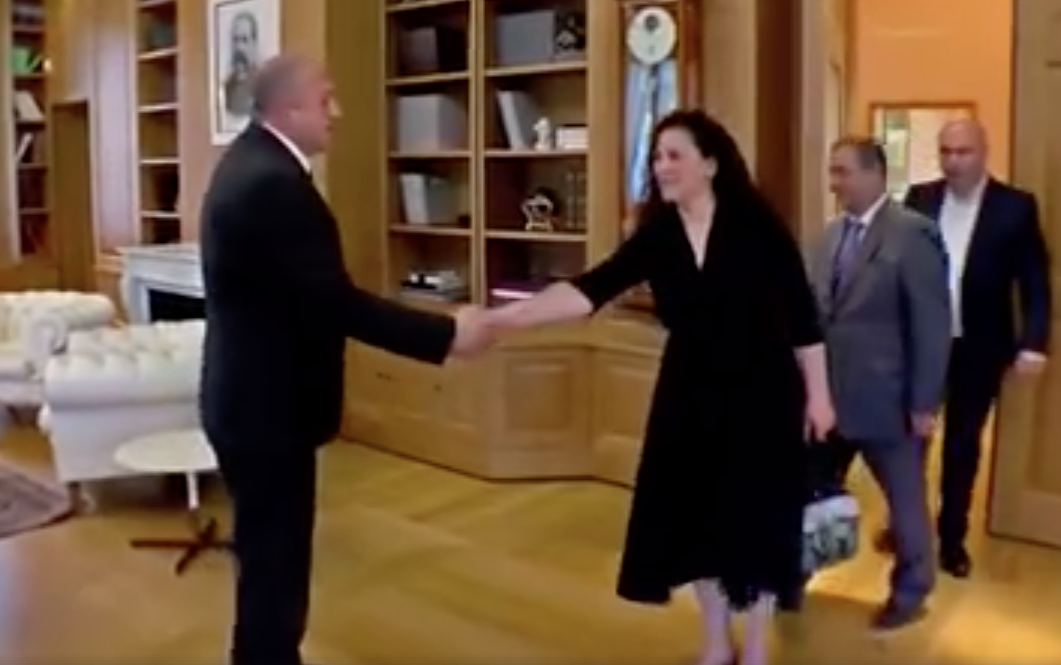 Leyla Mustafayeva Gürcüstan prezidenti ilə görüşüb